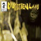 BUCKETHEAD Pike 212 - Hornet album cover