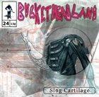 BUCKETHEAD Pike 24 - Slug Cartilage album cover
