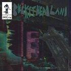 BUCKETHEAD Pike 245 - Space Viking album cover