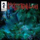 BUCKETHEAD Pike 251 - Waterfall Cove album cover