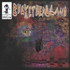 BUCKETHEAD Pike 252 - Bozo In The Labyrinth album cover