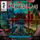 BUCKETHEAD Pike 166 - Region album cover