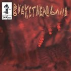 BUCKETHEAD Pike 249 - The Moss Lands album cover