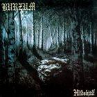 BURZUM Hliðskjálf album cover