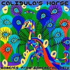 CALIGULA'S HORSE Moments from Ephemeral City album cover