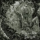 CARA NEIR Portals To A Better, Dead World album cover