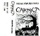 CARNIÇA Release From Rotteness album cover