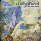 CATHEDRAL The Guessing Game album cover