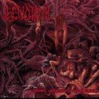 CENOTAPH Pseudo Verminal Cadaverium album cover
