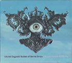 COLONEL CLAYPOOL'S BUCKET OF BERNIE BRAINS The Big Eyeball In The Sky album cover