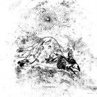 CONSTRITO Constrito album cover