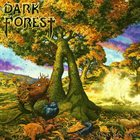 DARK FOREST Beyond the Veil album cover