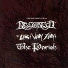 DESOLATEVOID Desolatevoid / The Last Van Zant / The Parish album cover