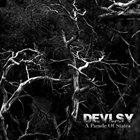 DEVLSY A Parade Of States album cover