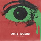 DIRTY WOMBS Wrecked Youth album cover