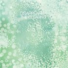 DISAPPEARER The Clearing album cover
