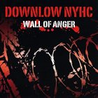 DOWN LOW Wall Of Anger album cover