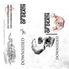 DOWNSIDED Downsided / Hummingbird Of Death album cover