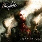 EBONYLAKE In Swathes of Brooding Light album cover