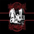 EISREGEN Madenreich album cover