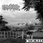 EMBITTERED Choked album cover