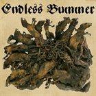 ENDLESS BUMMER Fritzl album cover