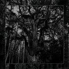 ENISUM Seasons of Desolation album cover