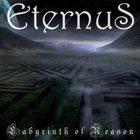 ETERNUS Labyrinth of Reason album cover