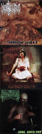 FECALIZER Dead Human Toilet / Gore Fucking Bless You / Gore Auto-psy album cover