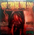 FECALIZER Gore Cannibal Tour 2010 album cover