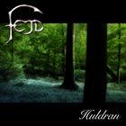 FEJD Huldran album cover