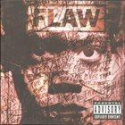 FLAW Through the Eyes album cover