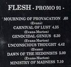 FLESH Promo 91 album cover