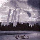 FLESHPRESS Pillars album cover