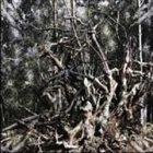 FOLGE DEM WIND Hail the Pagan Age album cover