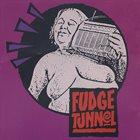 FUDGE TUNNEL Fudgecake album cover