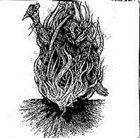 FURDIDURKE Bone Awl / Furdidurke album cover