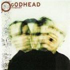 GODHEAD Evolver album cover