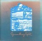 THE GROUNDHOGS Split album cover