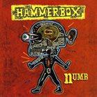 HAMMERBOX Numb album cover
