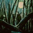 HARROW Fallow Fields album cover