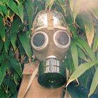 HAYSTACKS BALBOA Detoxified album cover