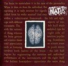 HIATUS El Sueño De La Razon Produce Monstruos / The Brain album cover