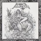 HOG MOUNTIN Möse / Hog Mountin album cover