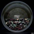 HUMMINGBIRD OF DEATH Cold World / Hummingbird Of Death album cover