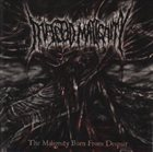 INFECTED MALIGNITY The Malignity Born From Despair album cover