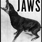 JAWS Jaws album cover
