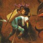 JOHN ZORN The Painted Bird album cover