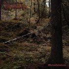 KALMANKANTAJA Metsäkalmisto II album cover
