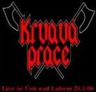 KRVAVÁ PRÁCE Live in Ústí nad Labem 28.1.06 album cover